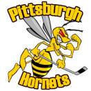 Current Pittsburgh Hornets Logo